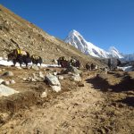 Lobuche-Everest-Base-Camp-Trek-Nepal-Adventure-Sindbad