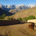 On the way to Hemisshukpachen on Ladakh-Bike,Hike,Raft trip by Adventure Sindbad