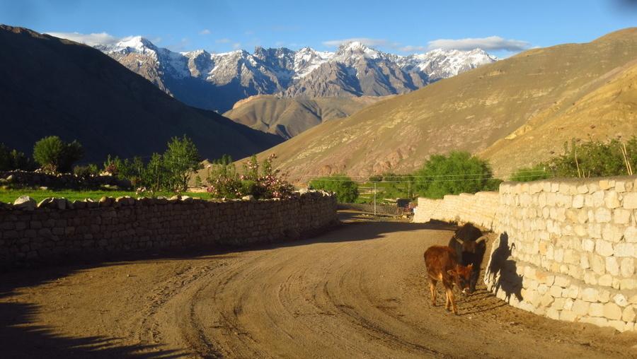 Ladakh – Bike, Hike, Raft