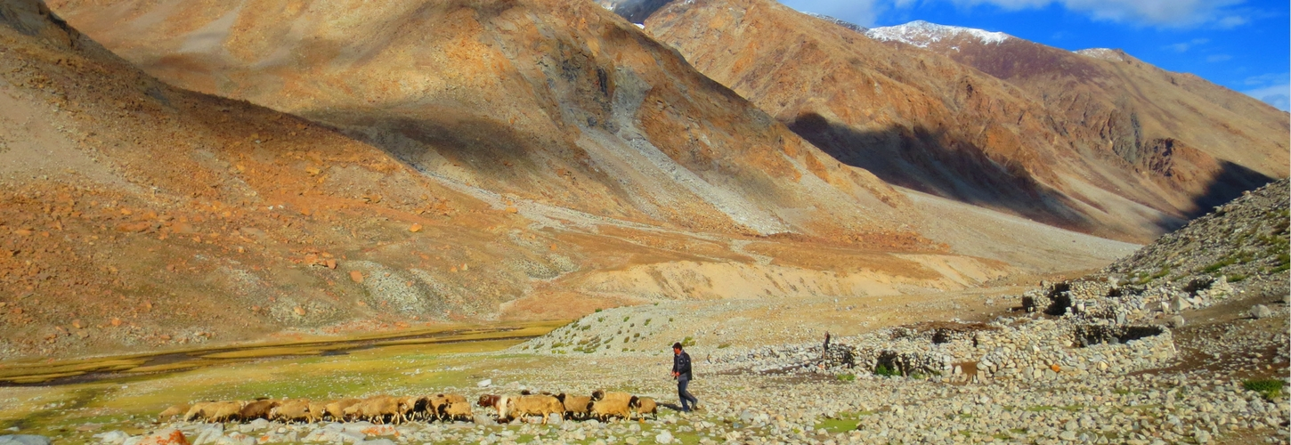 nubra-valley-trek-banner