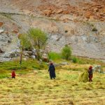 Locals-Hundar-Nubra-Valley-Trek-Adventure-Sindbad