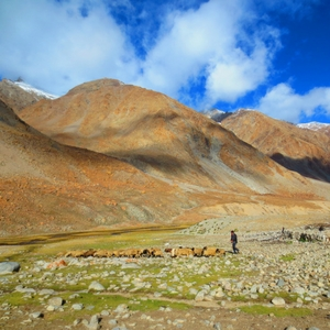 nubra-valley-trek-thumbnail-Ladakh-Adventure-sindbad