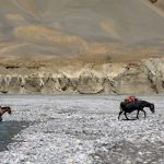 Wet Hooves - Horses crossing the river before Gyabshalung on ParangLa Trek across Spiti and Ladakh by Adventure Sindbad