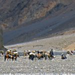 ITBP-on-their-routine-exercises-near-the-Chinese-border-on-ParangLa-Trek-across-Spiti-and-Ladakh-by-Adventure-Sindbad