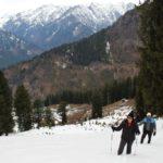 Deo-Tibba-Valley-Himachal-Adventure-Sindbad